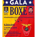 Gala de Boxe do Águias da Musgueira | 3 de março | Pavilhão da Escola Secundária do Lumiar