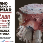 Conferência Arqueologia no Bairro | 12 de abril | Auditório da Biblioteca Orlando Ribeiro